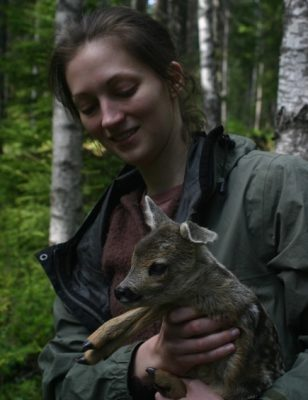 Deer monitoring project in Sweden